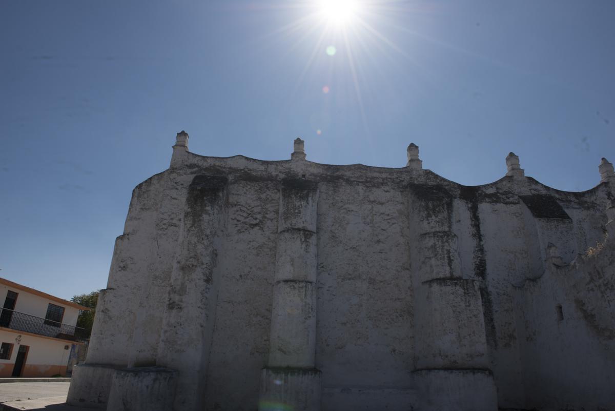 Hidalgo_20140129_026