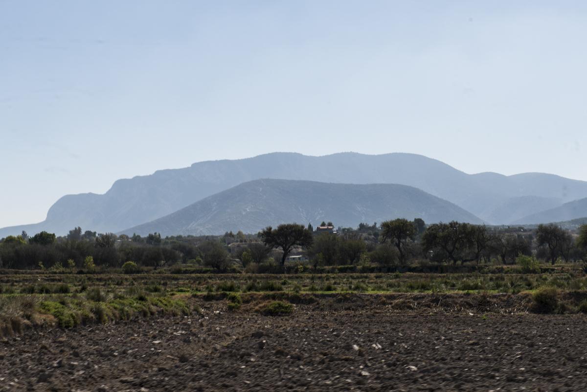Hidalgo_20140129_030
